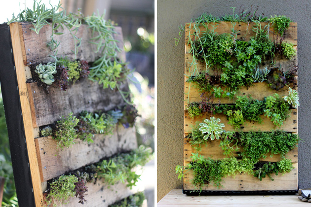 SIX BY EIGHT : DIY Vertical Succulent Planter